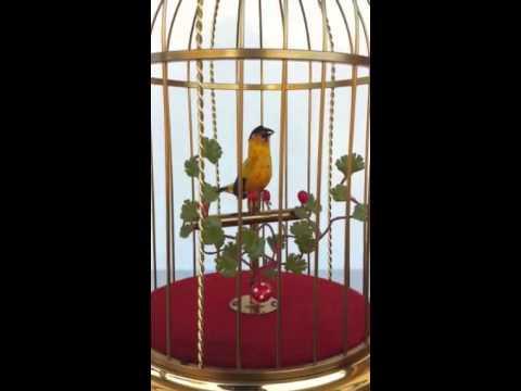 Animatronic singing bird