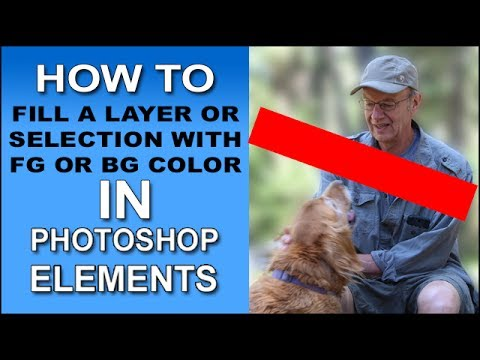 Fill a Layer or Selection with the Foreground or Background Colors