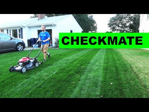 Back to Striping with the Checkmate Striping Kit