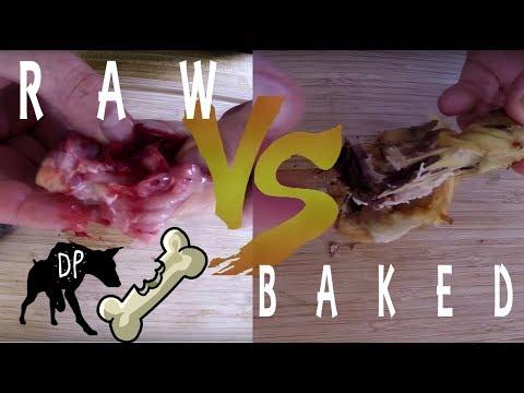 Raw vs Cooked Chicken Bones