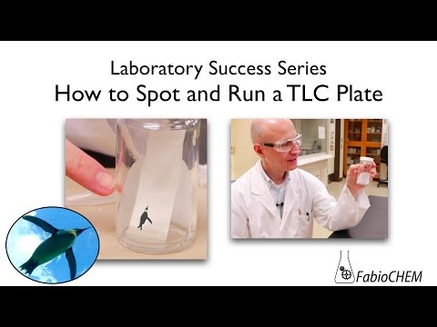 How to Spot and Run a TLC Plate