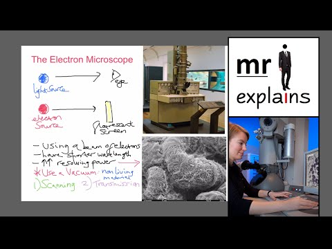 mr i explains: The Electron Microscope (Scanning and Transmission)
