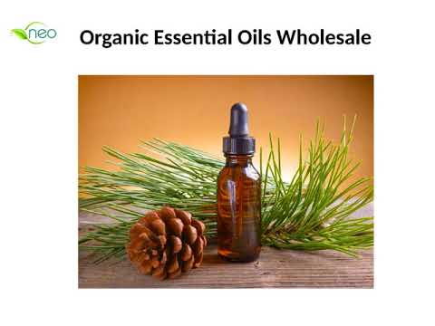 Buy Pure Organic Oils at Wholesale Price