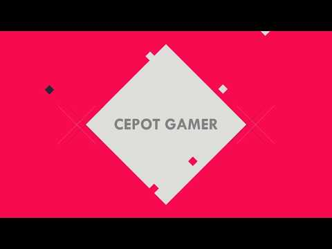 WE ARE CEPOT GAMER