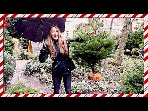 A Christmas Tree for my TINY London Flat! Vlogmas Day 17