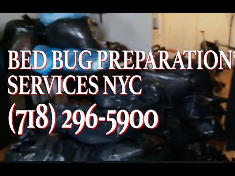 Bed Bug King Bed Bug Prep NYC Manhattan Brooklyn Queens Preparation Bedbugs