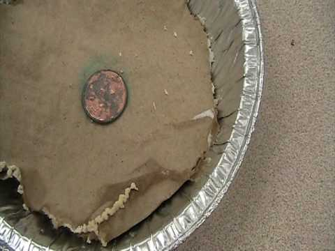 Copper Penny Reacting with Vinegar