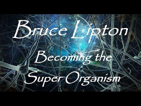 Bruce Lipton -