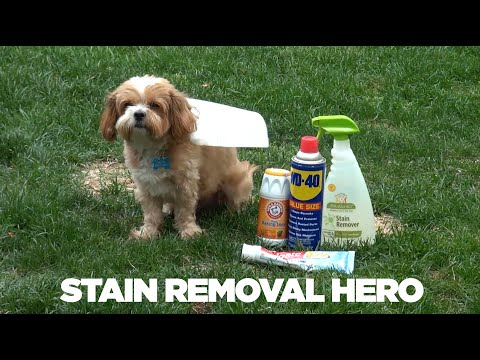 ♫ Stain Removal Hero