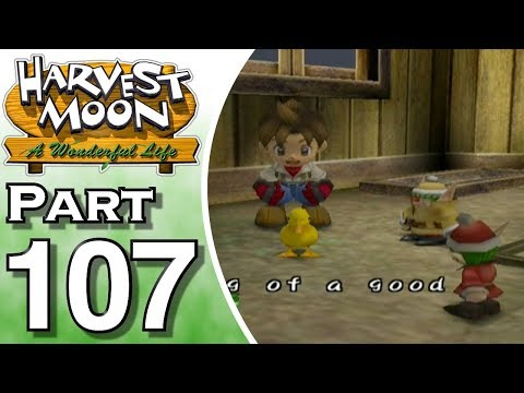 Harvest Moon: A Wonderful Life Part 107: A Duckling