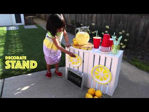 Make Your Own Lemonade Stand