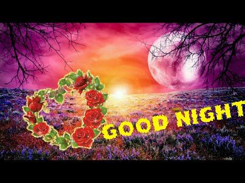 Good Night Shayari/WhatsApp Status/Wishes/Song/Video/Hindi Sayari/Angel Bktita