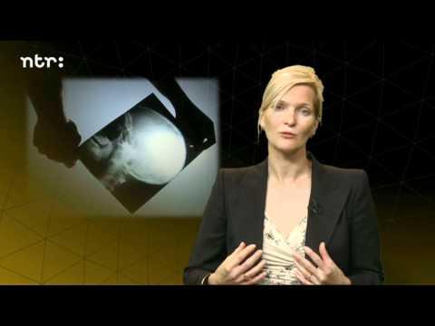 Kettingreactie #3: Zijn wij ons brein? Het antwoord van prof. mr. Nora van Oostrom