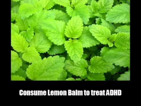 11 Effective Home Remedies for ADHD