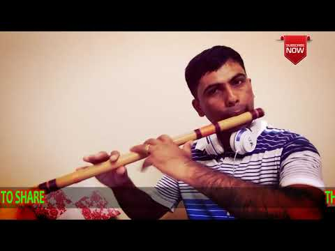 Tiriri Murali Bajyo Banaima Flute Tutorial by Dinesh