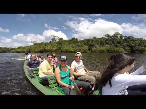Juma Jungle Lodge - Amazon Forest Trip (Brazil)