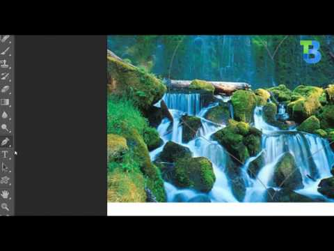 Using Vector Mask - Adobe Photoshop CS6