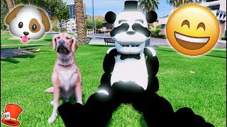 ANIMATRONICS FIRST PET DOG! PANDA FREDDY