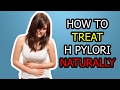 How To Treat H Pylori Naturally | Can H Pylori Be Cured? Can H Pylori Come Back?