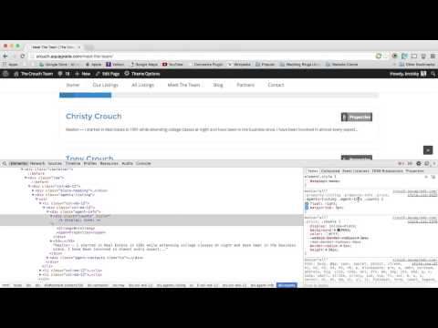 WordPress - How to remove elements with CSS