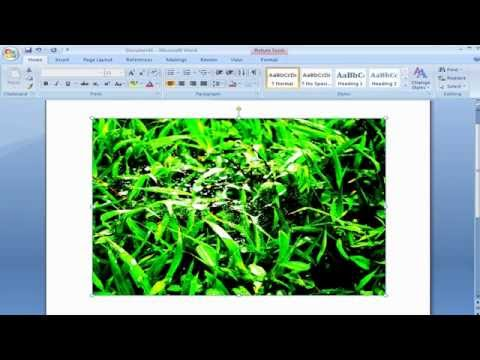 How to Adjust Contrast Brightness Image in Microsoft Office Word