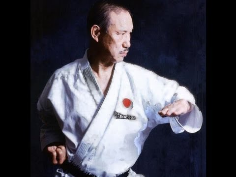 karate for beginners stikes
