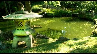 Zen Garden Infinite Bliss Total Relaxation Mindfulness Meditation