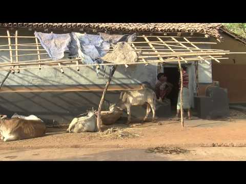 The Millennium Village Project - Jharkhand, India
