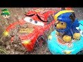 Disney Cars And Paw Patrol Chase