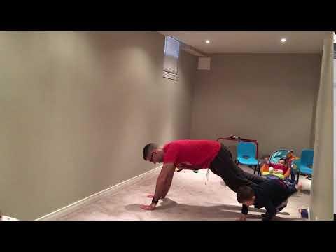 Hand Plank, Lifting Opposite Limbs