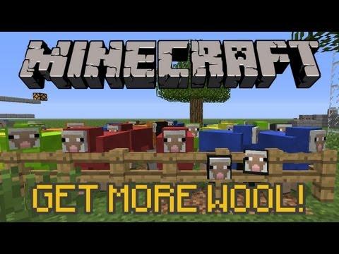 Sheep Trick: Get MORE wool!