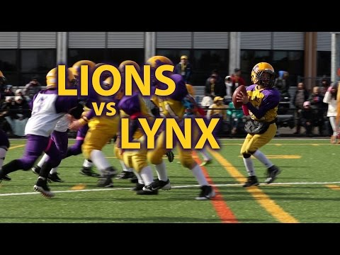 20151018 - Lions vs Lynx (atome)