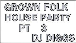 GROWN FOLK HOUSE PARTY    (INCLUDES CLASSIC ELECTRIC SLIDE, AND CAN