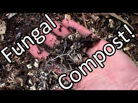 Free Fungally Dominated Compost & Mulch