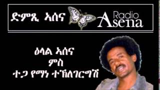 Voice Of Assenna:intv With Mr Yemane T/gergish - Part 16 -  06112014