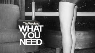 The Weeknd - What You Need (CODE E And DENZEL Remix)