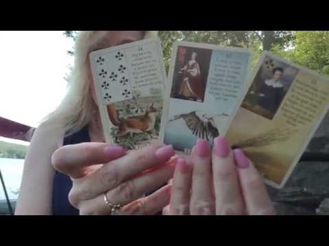 45 Second Lenormand Reading: Will my dog be ok?