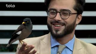 Download بامداد خوش - کاه فروشی - صحبت با حاجی اکبر زرگر درمورد پرنده مینا Video
