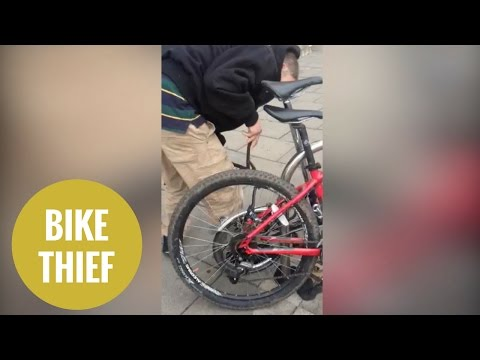 Thief uses a pair of bolt cutters to break through a bicycle lock