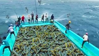 12 Most Surprising Fishing Moments in the World