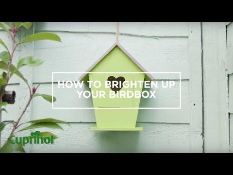 How To Paint A Bird Box   Cuprinol UK