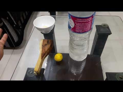 Best way to keep birds healthy in Summer