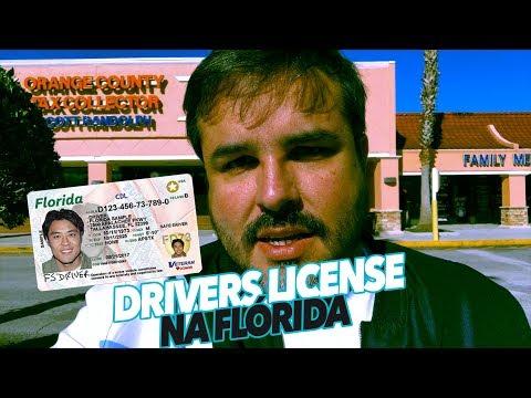 DRIVERS LICENSE NA FLORIDA - DICAS - Paulo Sergio