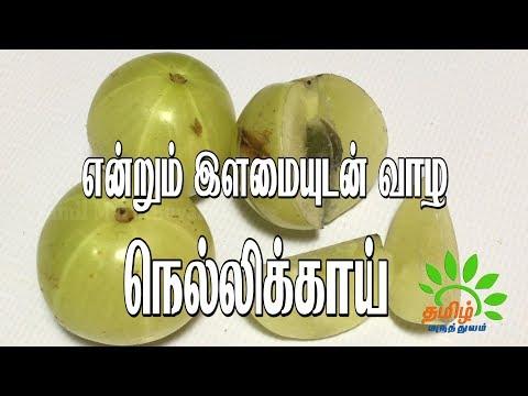 என்றும் இளமையுடன் வாழ நெல்லிக்காய் | Endrum ilamai udan vazha Nellikai | Amla Health Benefits