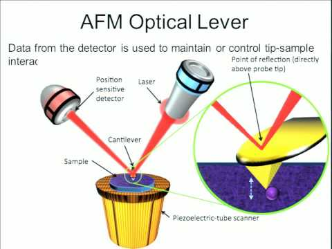NACK Course Notes: Advanced Scanning Probe Microscopy Lecture 1