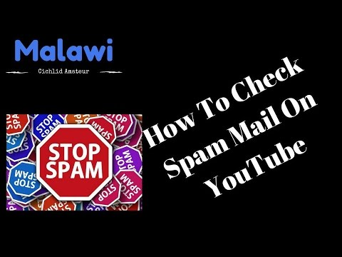 How To Find Your Spam Folder - YouTube-