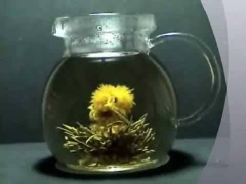 Blooming Tea Show