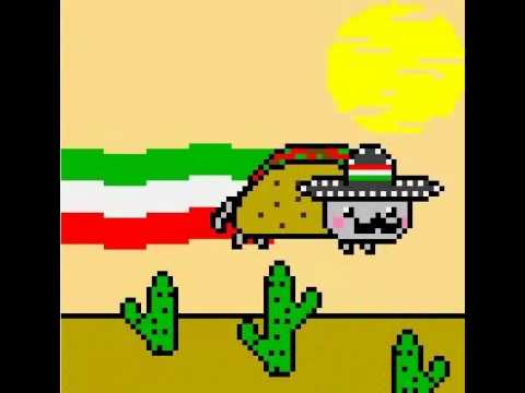 [Mexican Nyan Cat♥]