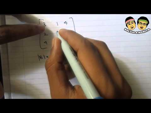 Calculating the Determinant of a Matrix Using a Calculator [Casio FX-991MS]