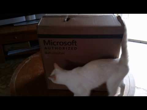 The Cat Computer (Refurbished HP Compaq 6200 Pro)